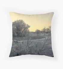 Town Lake - Frozen  Throw Pillow