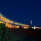 Riviera Hotel at Dusk by Michelle Lovegrove