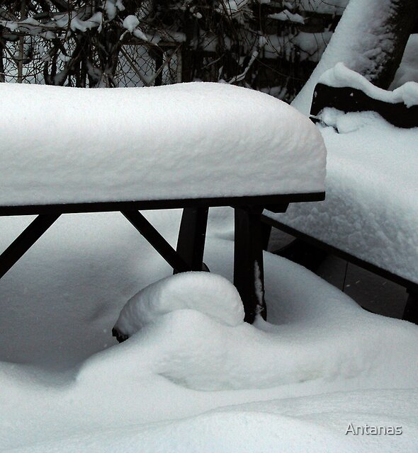 In winter 3 - resting place in summer time by Antanas
