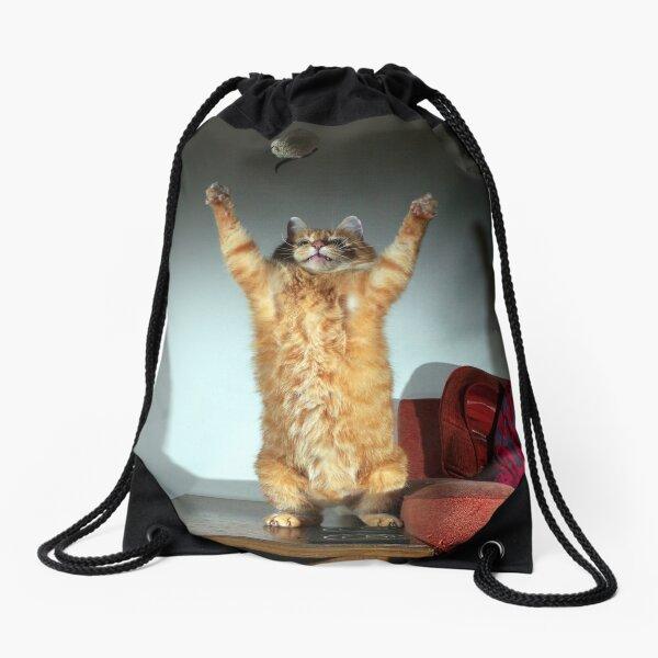 Playful cat Drawstring Bag