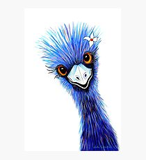 Emu Elegance Photographic Print