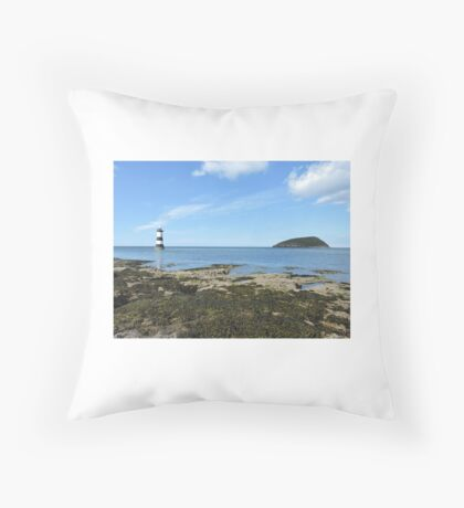 View Of Puffin Island Throw Pillow