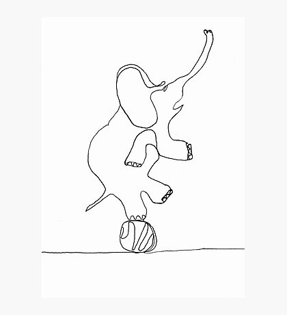 elephant on ball Photographic Print
