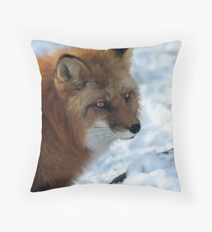 Snow fun in and around Montreal Throw Pillow