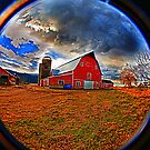 Country Life by Clayton Bruster