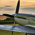 Seafire by Lea Valley Photographic