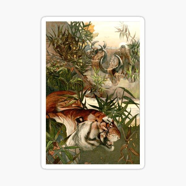 Shere Khan Das Dschungelbuch Detmold Sticker