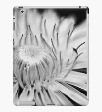 reach iPad Case/Skin