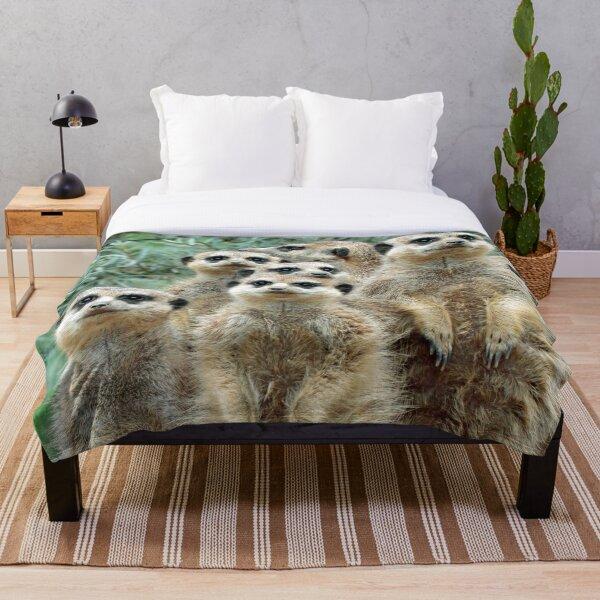 Meerkat 012 Throw Blanket