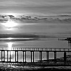 Sunrise Tomales Bay, CA, 2010 by Scott Johnson
