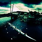 Frank Kitts Park Lagoon - Wellington by howieb101