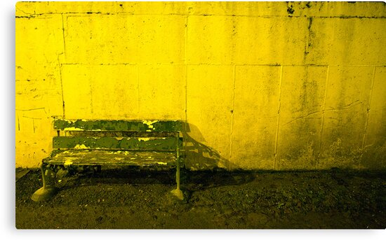 Seat For Watching The Dogs by rorycobbe
