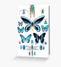 Teal Insect Collection Greeting Card