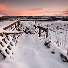 Gate by james  thow