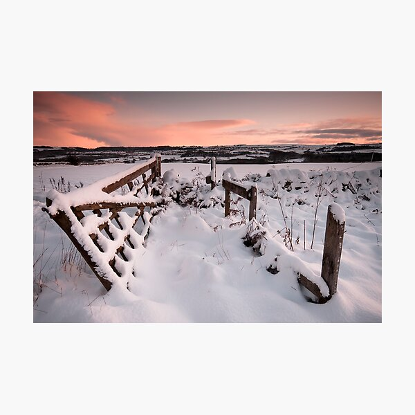 Gate Photographic Print