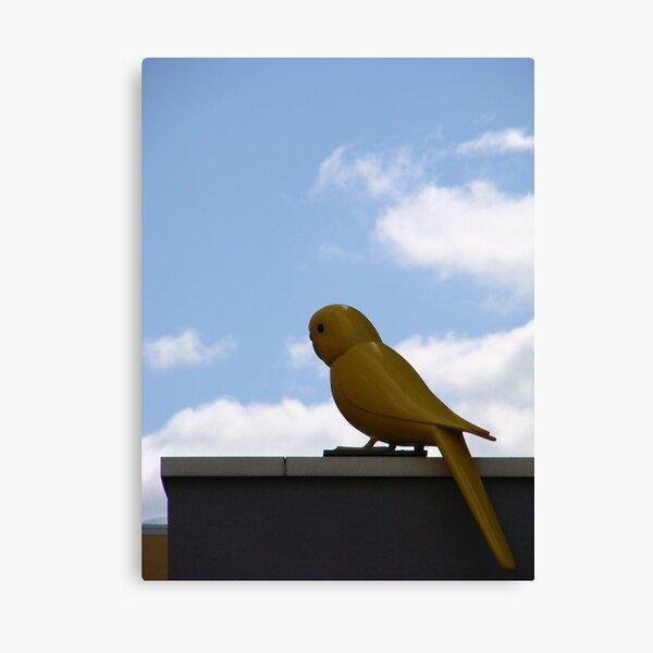 A Big Tweety Bird Canvas Print