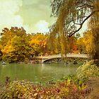 The Romance of Autumn by John Rivera