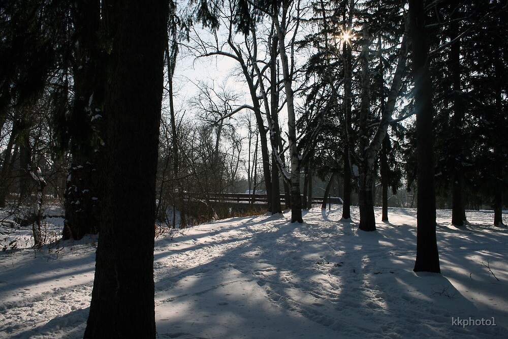 Shadows Of Winter by kkphoto1