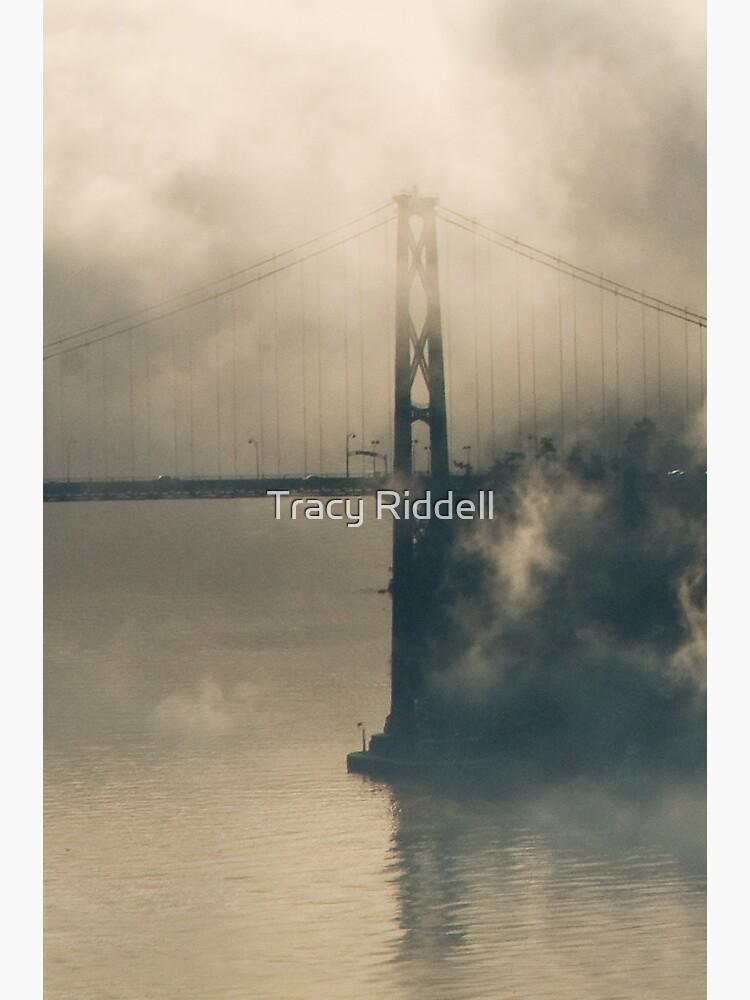 Lions Gate Bridge in Fog by taos