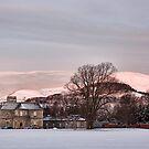 A Winter Morn by Lynne Morris