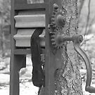 The Old Wash Stand by Lynn  Gibbons