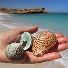 Ocean Gifts - Maggies Beach, Warroora Station WA Australia by cookieshotz