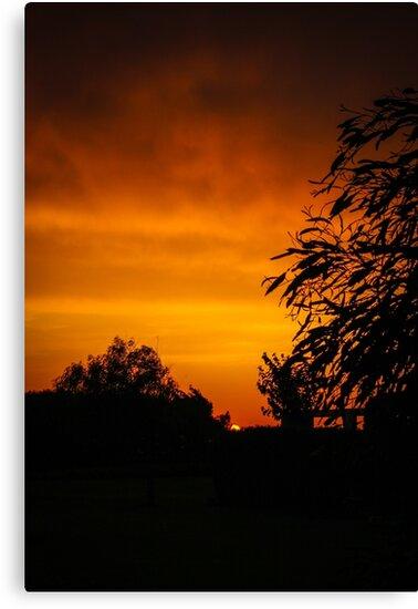 Fiery Orange Sunset by Izzii