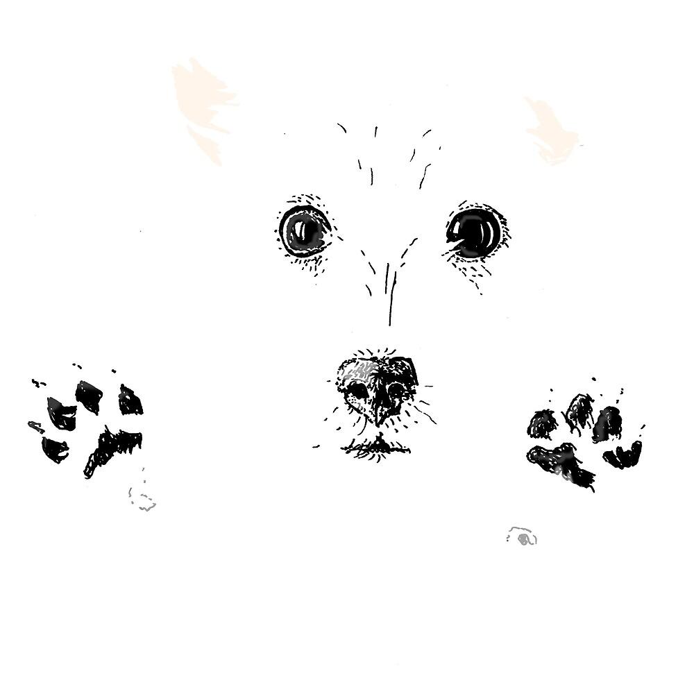 A very cute dog by Johan Malm