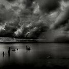 Dark  by jason owens