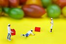 Chef Tumbled In Front Of Colorful Tomatoes miniature art by Paul Ge