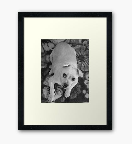 Strong and brave Framed Print