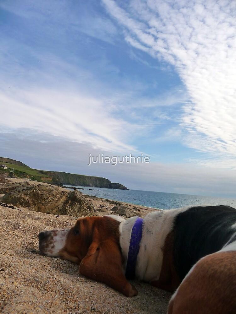 Beach Basset  by juliaguthrie