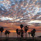 Stunning Sunset 1/7/11 by Gloria Abbey