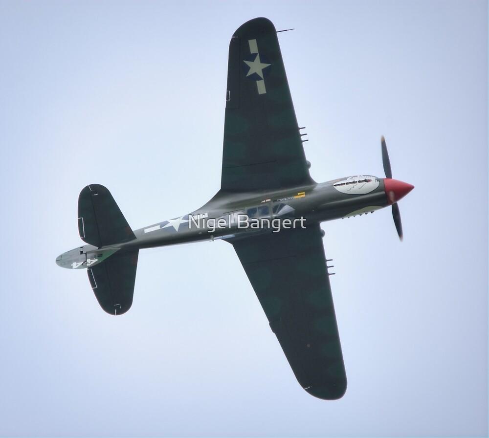 P40 Kittyhawk Lulu Belle by Nigel Bangert