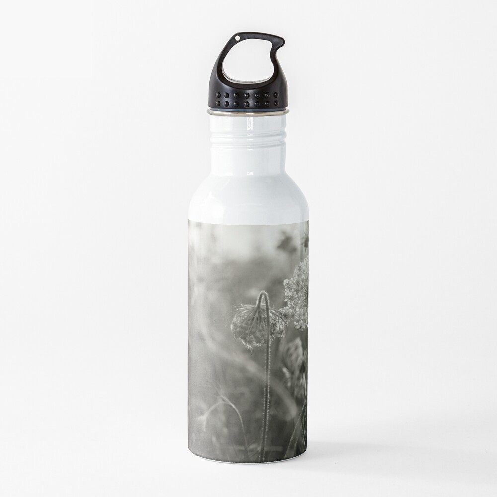 Queen Anne's Lace, No. 1 Water Bottle