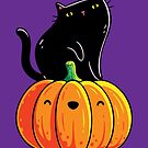 Black Kitten on a Pumpkin by LydiaLyd