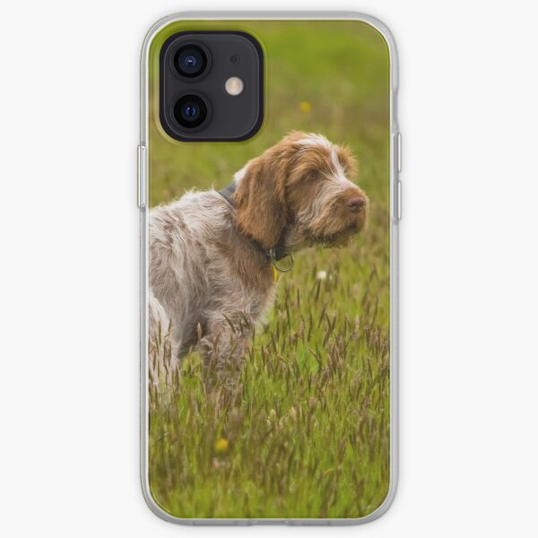 Puppy in a meadow Spinone iPhone Soft Case