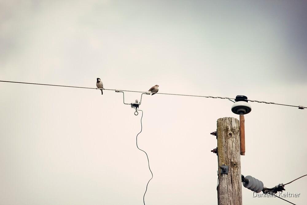 Communication by Danielle Keltner