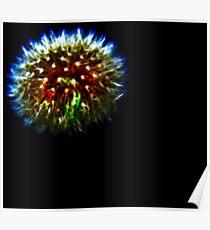 Dandelion Firework Poster