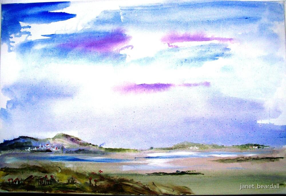 morning glory by janet  beardall