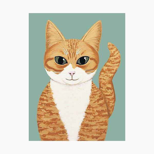 Orange Tabby Cat Photographic Print