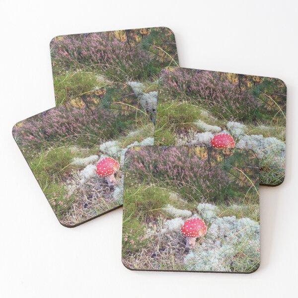 Forest underground Coasters (Set of 4)