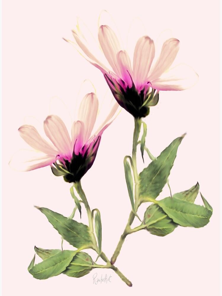 Bloom Romantik by RanitasArt
