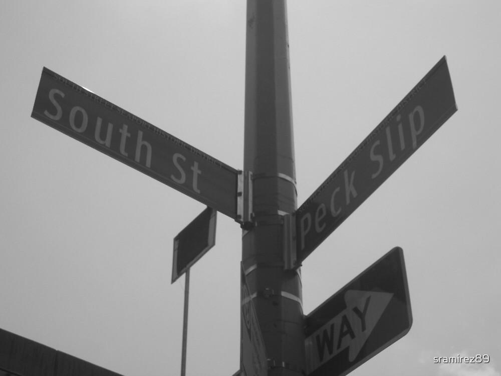 Street Signs #8 by sramirez89