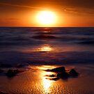 Casperson Beach Suns  by Frank Bibbins