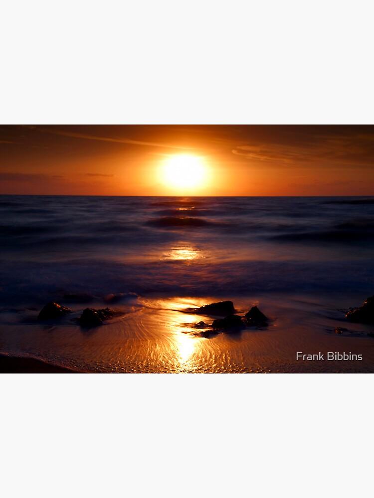 Casperson Beach Suns  by organicman2