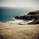 Blowhole Beach 1 by Michael Walker