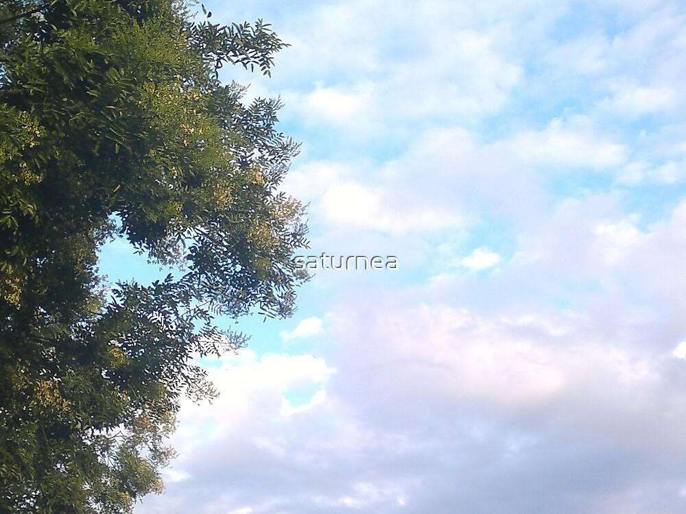 Sky by saturnea
