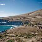 Blowhole Beach 2 by Michael Walker