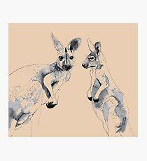 Kangaroos Black and White Photographic Print